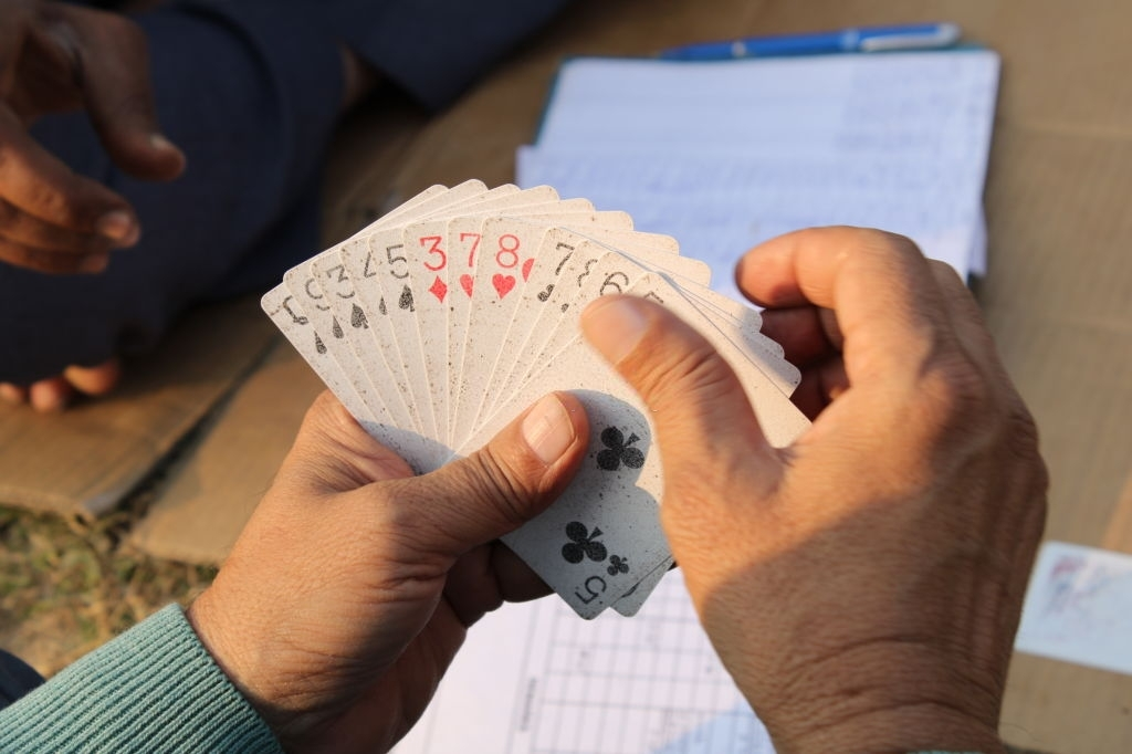 Want to Become a Rummy Expert? Follow These Winning Tips!